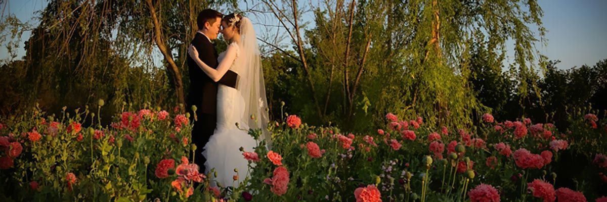 s clark gardens wedding-0